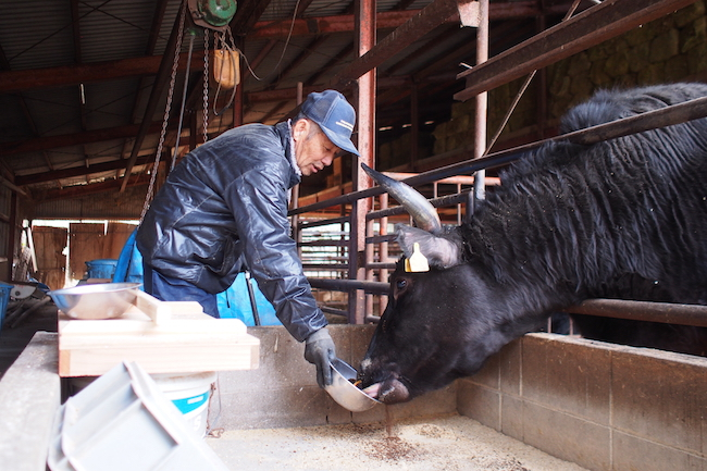 注目ブランド「小豆島オリーブ牛」がエコな牛肉と評価されるわけ