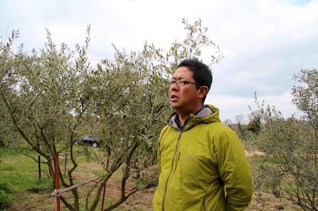 商社を辞めてオリーブ農家へ!小豆島移住者が語る、島暮らしのリアル
