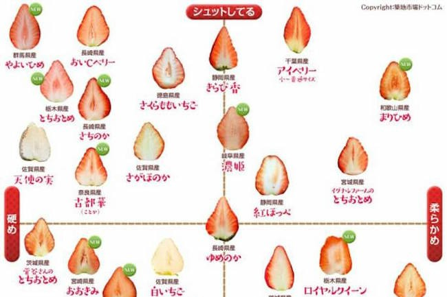 築地市場ドットコム(@tsukijiichiba)ツイッター上に公開された『苺の断面図カタログ』が話題です。