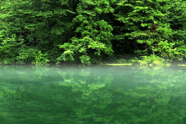 新潟県中魚沼郡にある湧水、『龍ヶ窪(竜ヶ窪)』。目にしたものの心を虜にする美しい写真を、この地に伝わる伝説と共にご紹介します。
