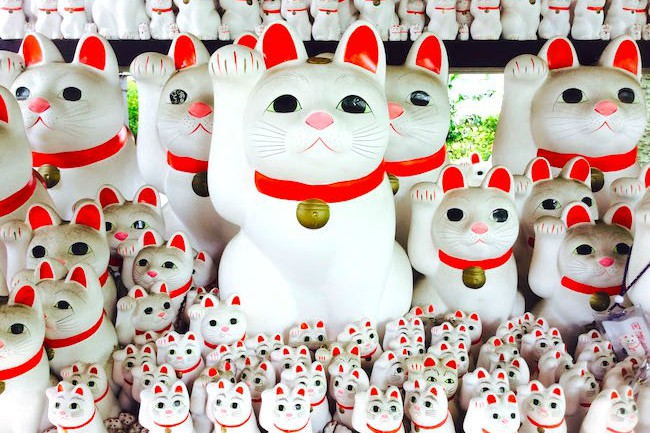 東京都世田谷区にある豪徳寺。都内の方なら耳にしたことはあるかもしれませんが、地方の方はご存知でないかたも多いのでは? 実はこちらの豪徳寺は、台東区「浅草今戸神社」、新宿区落合南長崎「自性院」と並び、「招き猫発祥の地」としても有名です。さらに、現在放送中のNHK・大河ドラマでもおなじみ、江戸幕府の重臣・井伊家に縁のある大変由緒あるお寺なのです。今回は井伊家ゆかりの豪徳寺に足を伸ばしてみました。