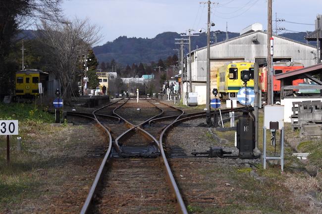 ムーミン谷を走る「いすみ鉄道」が、いま中高齢旅行客にウケるわけ
