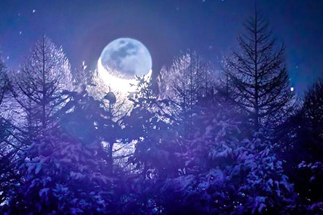 こんな絶景をみたことない。月光で輝く、長野県の美しい雪景色