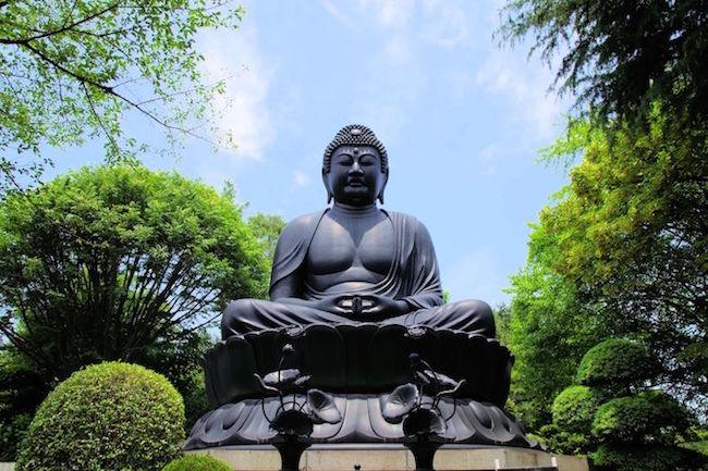 日本で三番目に大きい大仏が「東京都」にあると聞いて調べてきた