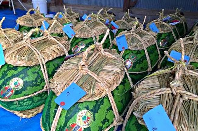 夏のフルーツといえば、スイカですよね。スイカは通常サイズでも大きなフルーツですが、富山県入善町には、通常のスイカより遥かにジャンボな「入善ジャンボ西瓜」という特産品があるのだとか!まぐまぐで配信中のメルマガ「あるきすと平田のそれでも終わらない徒歩旅行~地球歩きっぱなし20年~」では、この「入善ジャンボ西瓜」の収穫に立ち会った際の様子を教えてくれています。