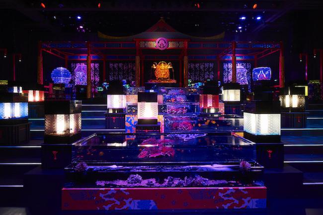 テーマは龍宮城。8千匹の金魚が舞う「アートアクアリウム」が話題