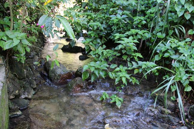 集落を流れる湧き水