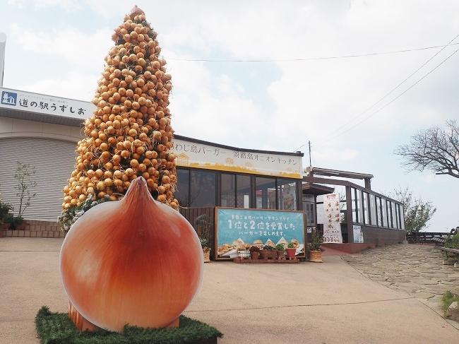 クリスマスには、同社が営む「道の駅うずしお」に、およそ1000個の玉ねぎを使ったクリスマスツリーが飾られる